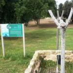 Führung durch die archäologischen Stätten Ashkelons